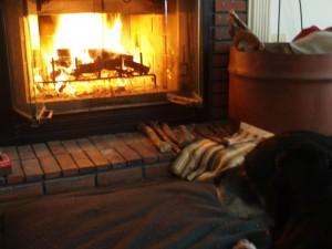 オポ14歳と暖炉